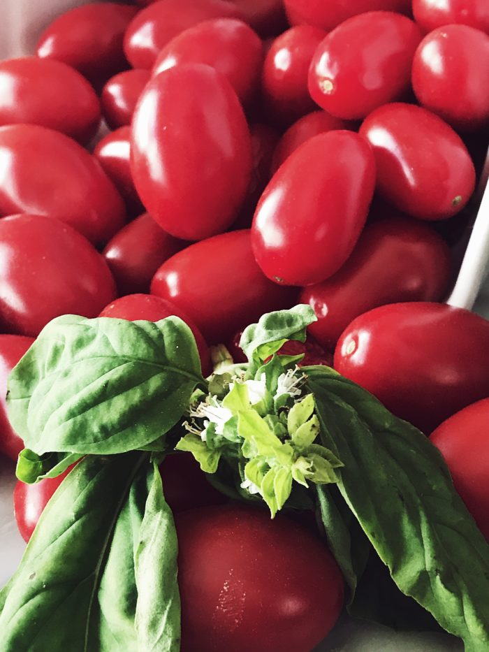 Italian fish pasta recipes: Get this fresh tomato easy tuna pasta recipe and more Italian pasta recipes on Gourmet project, an Italian food blog.