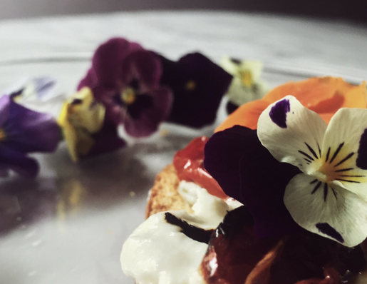 burrata appetizer: a gourmet burrata bruschetta with oven roasted tomatoes (and pansies)