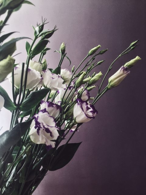 These are Lisianthus. A summer flower symbolizing an outgoing nature and/or appreciation.
