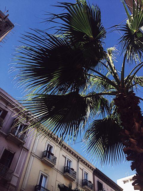 seaside-Christmas-in-Taranto-Puglia