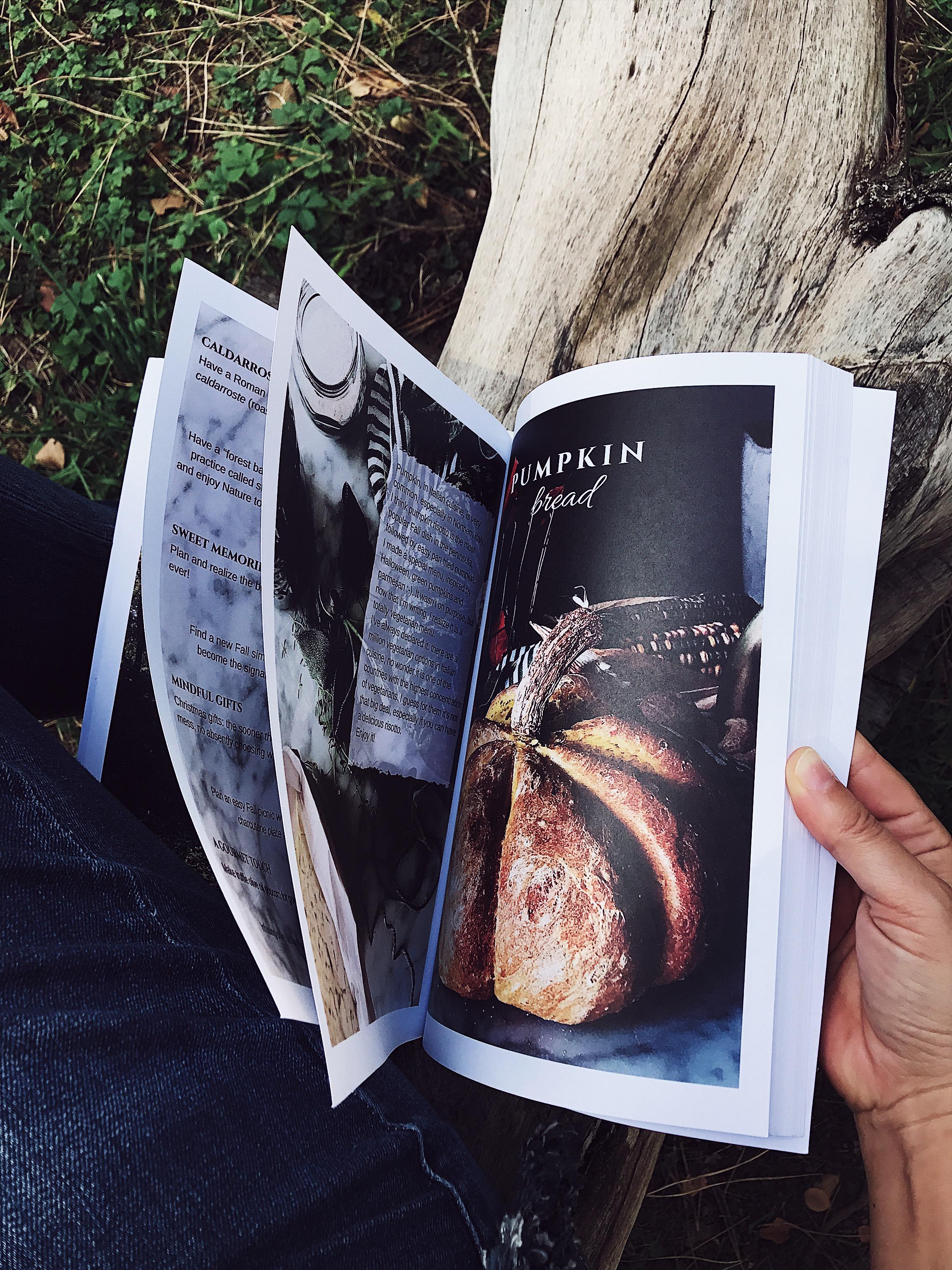 food magazine on a log