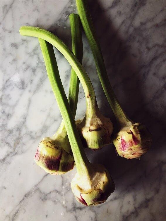 italian artichokes recipes
