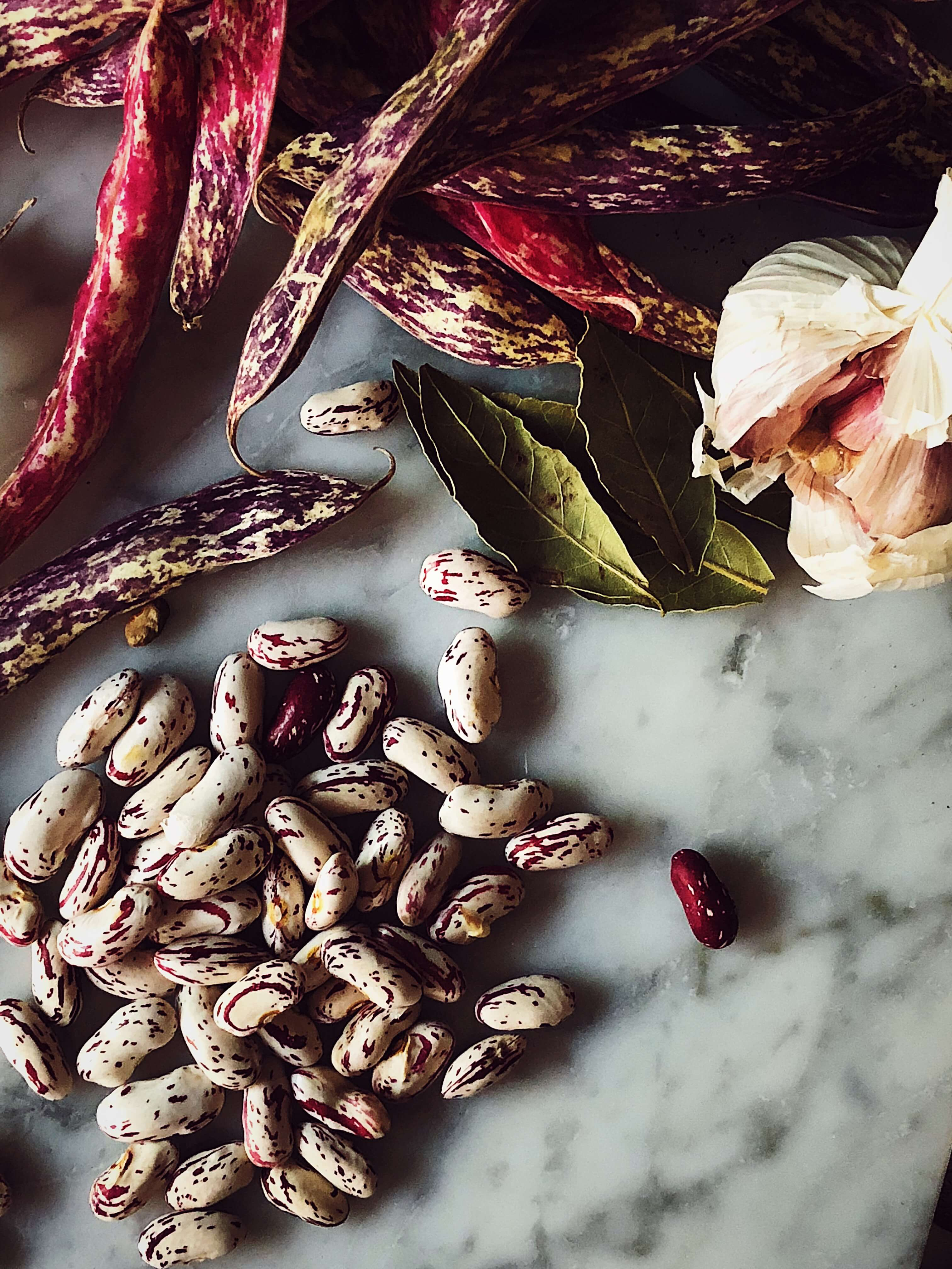 fresh borlotti beans, garlic and bay leaves
