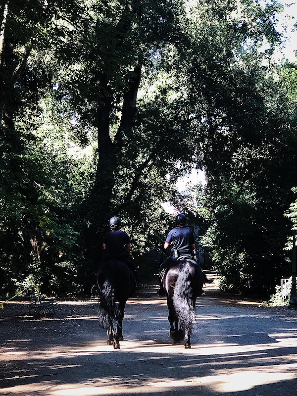 life in Italy: horse police